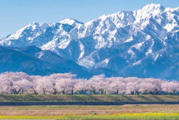 富山県に移住のアイキャッチ画像